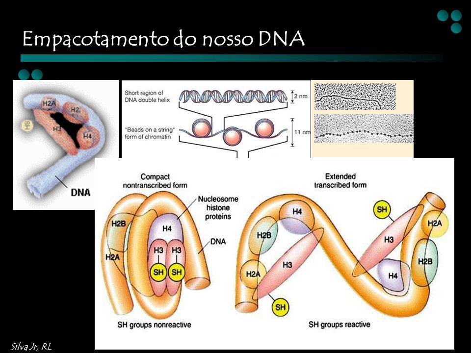 Silva Jr, RL Empacotamento do nosso DNA