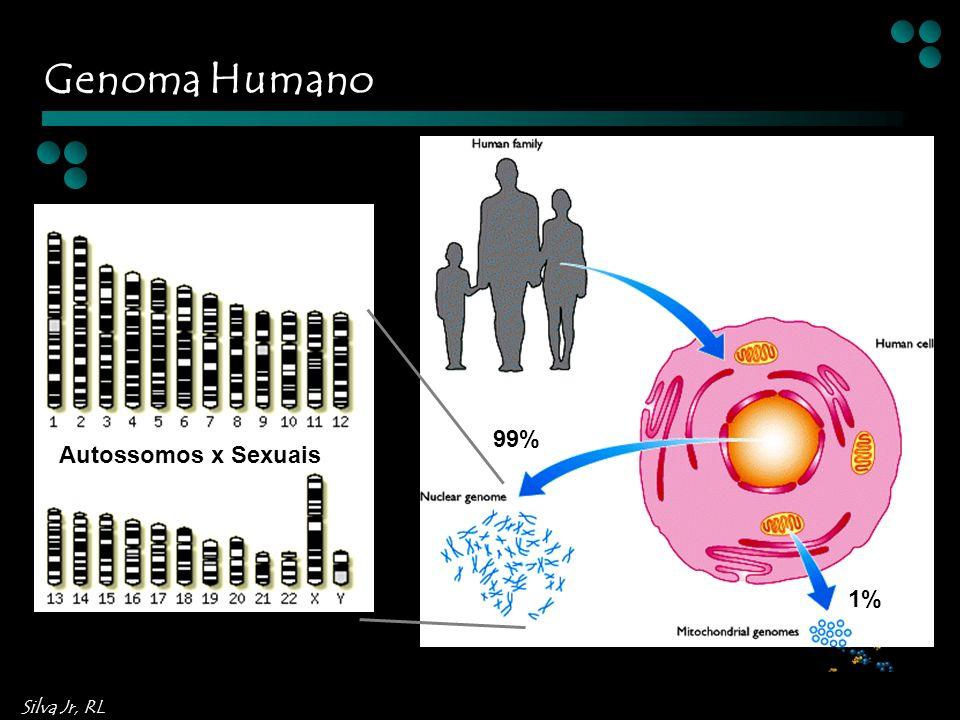 Silva Jr, RL Autossomos x Sexuais 99% 1% Genoma Humano