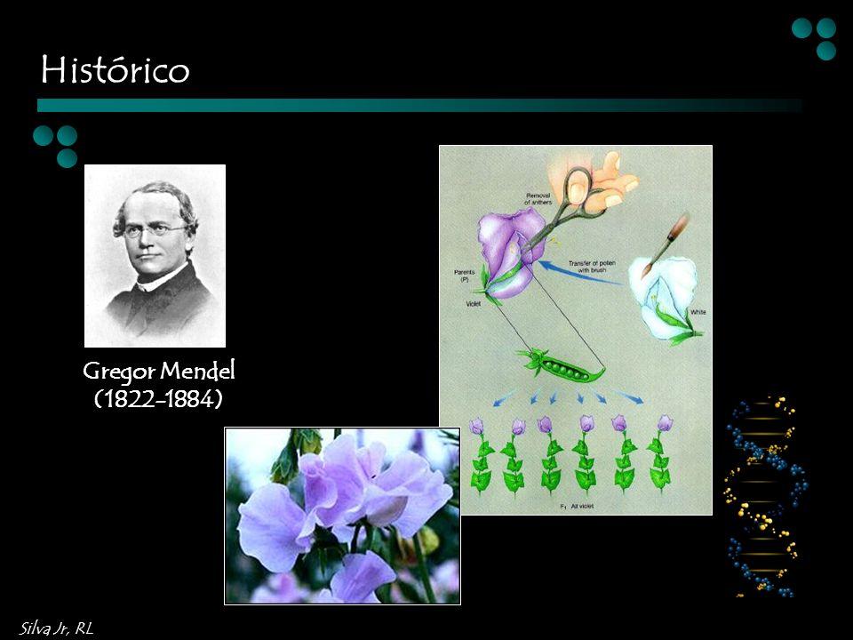 Silva Jr, RL Gregor Mendel (1822-1884) Histórico