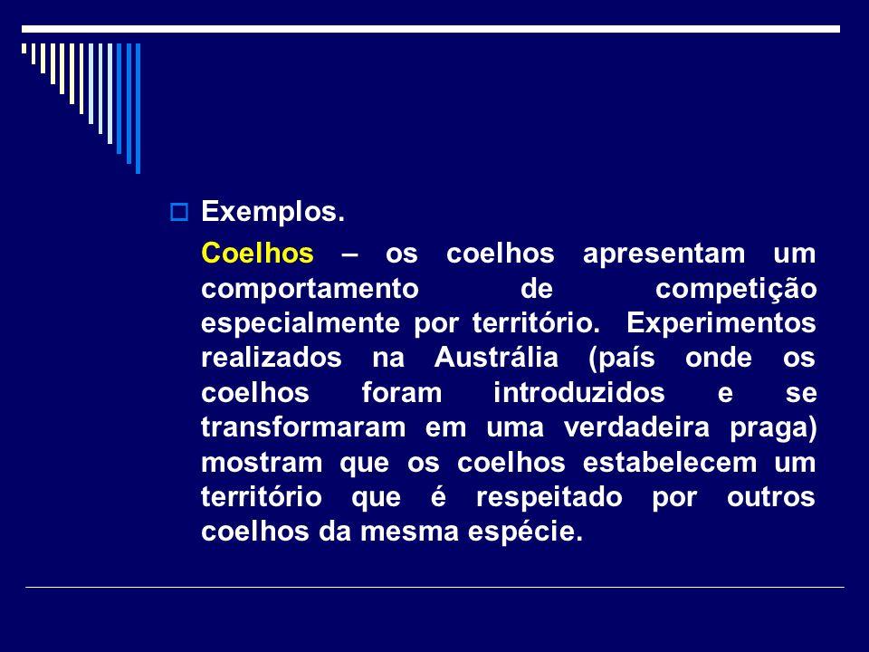 Exemplos.