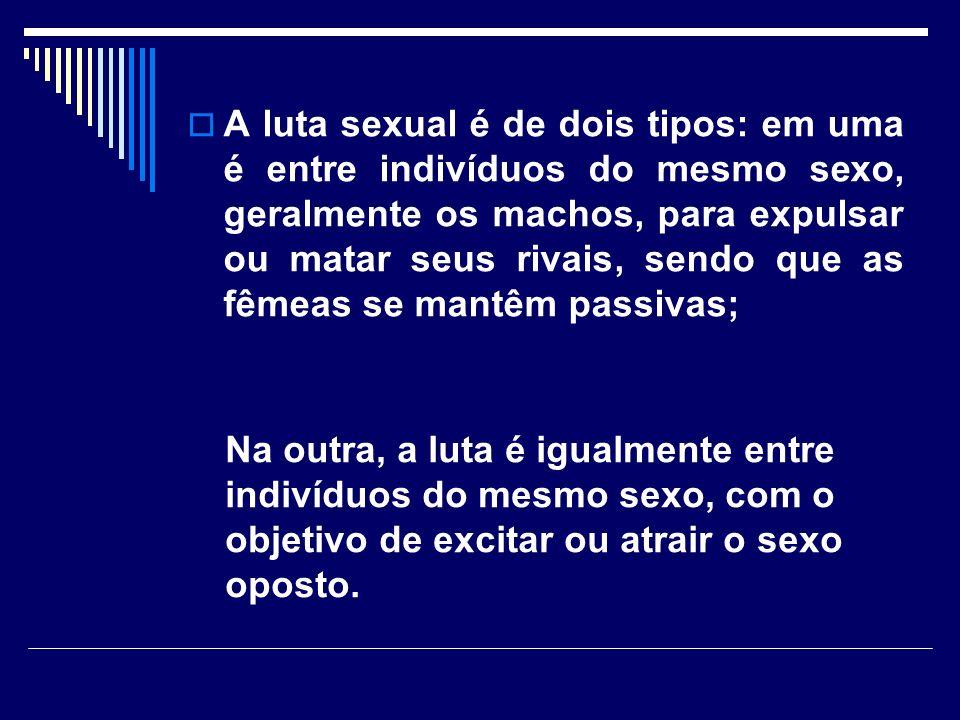 A luta sexual é de dois tipos: em uma é entre indivíduos do mesmo sexo, geralmente os machos, para expulsar ou matar seus rivais, sendo que as fêmeas se mantêm passivas; Na outra, a luta é igualmente entre indivíduos do mesmo sexo, com o objetivo de excitar ou atrair o sexo oposto.