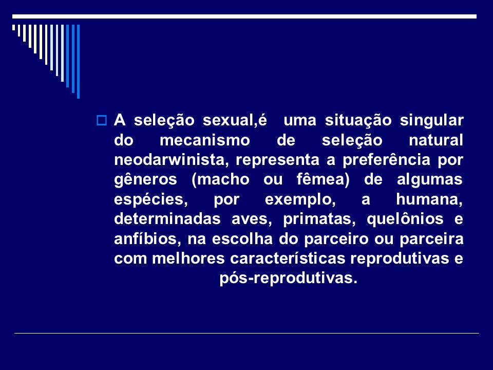 É importante perceber que na seleção intra-sexual, os adornos dos machos conferem vantagem reprodutiva mesmo sem a intervenção da preferência das fêmeas e de seleção inter-sexual.