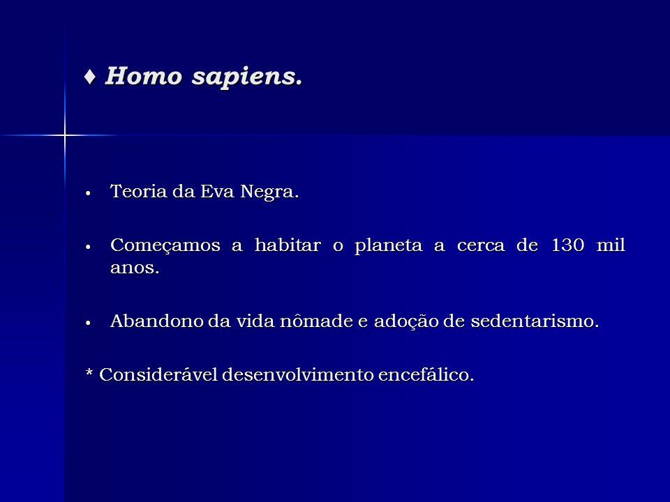 Homo sapiens. Homo sapiens. Teoria da Eva Negra. Teoria da Eva Negra. Começamos a habitar o planeta a cerca de 130 mil anos. Começamos a habitar o pla