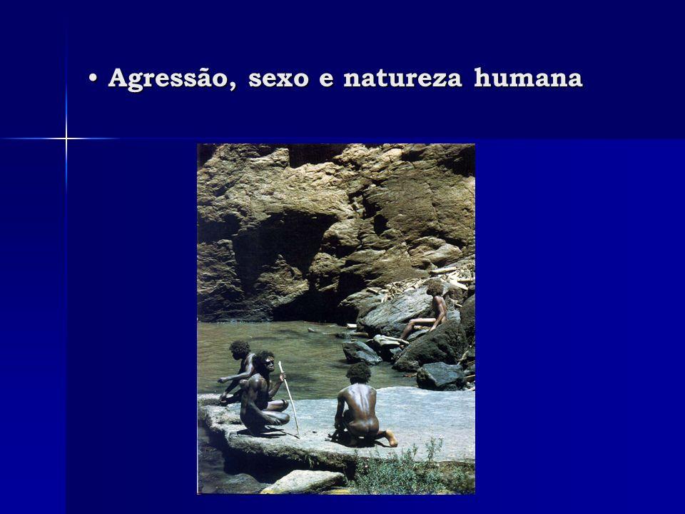 Agressão, sexo e natureza humana Agressão, sexo e natureza humana