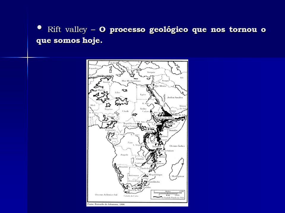 O registro fóssil dos hominídeos O registro fóssil dos hominídeos