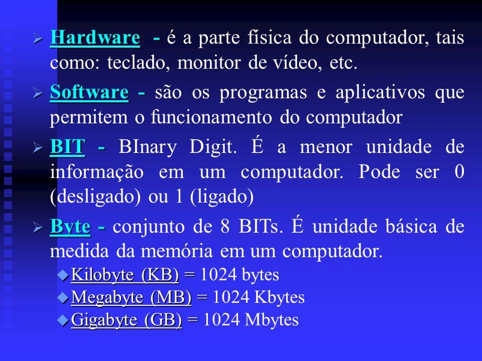 Hardware - Hardware - é a parte física do computador, tais como: teclado, monitor de vídeo, etc. Software - Software - são os programas e aplicativos