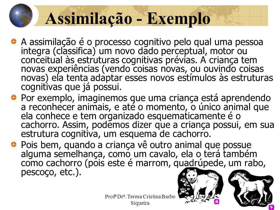 Profª Drª. Teresa Cristina Barbo Siqueira Assimilação - Exemplo A assimilação é o processo cognitivo pelo qual uma pessoa integra (classifica) um novo