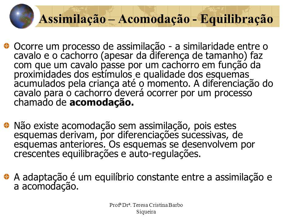 Profª Drª. Teresa Cristina Barbo Siqueira Assimilação – Acomodação - Equilibração Ocorre um processo de assimilação - a similaridade entre o cavalo e