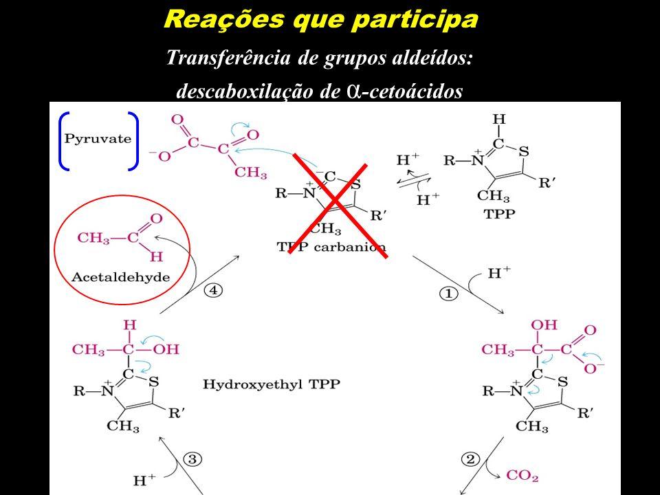 Reações que participa Transferência de grupos aldeídos: descaboxilação de α -cetoácidos