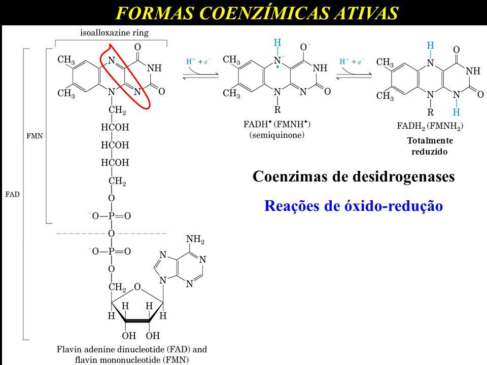FORMAS COENZÍMICAS ATIVAS Totalmente reduzido Coenzimas de desidrogenases Reações de óxido-redução