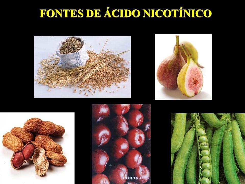 FONTES DE ÁCIDO NICOTÍNICO