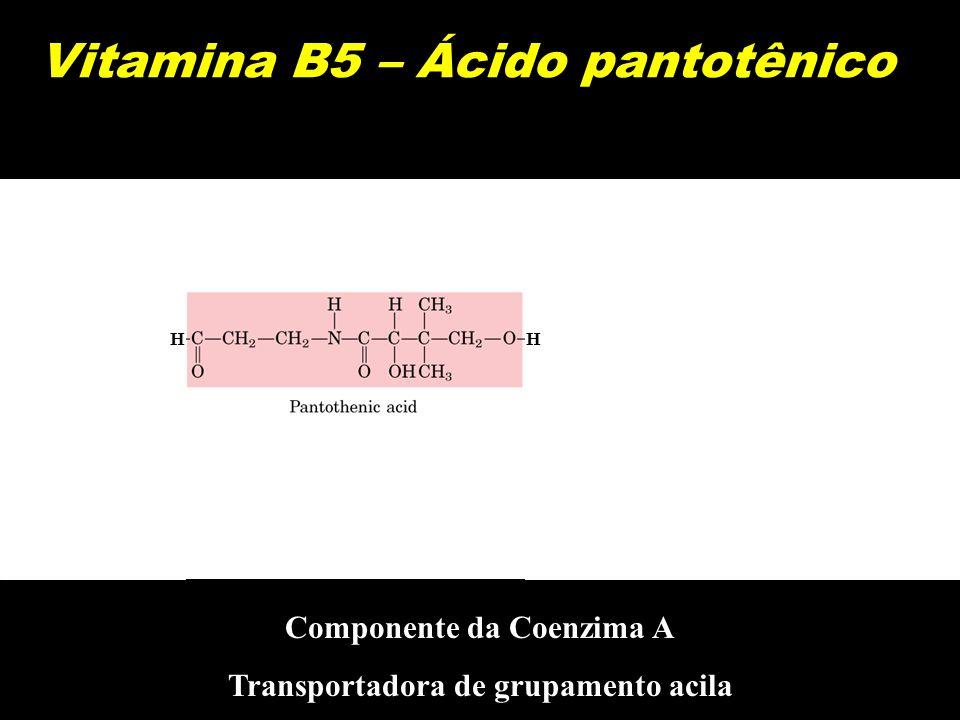 Vitamina B5 – Ácido pantotênico HH Componente da Coenzima A Transportadora de grupamento acila