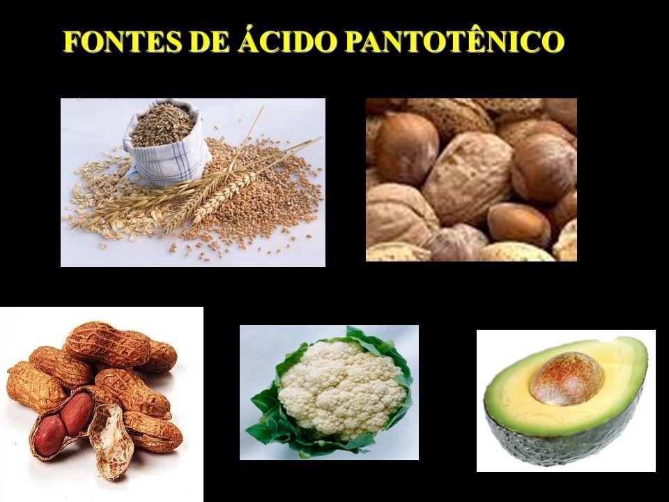 FONTES DE ÁCIDO PANTOTÊNICO