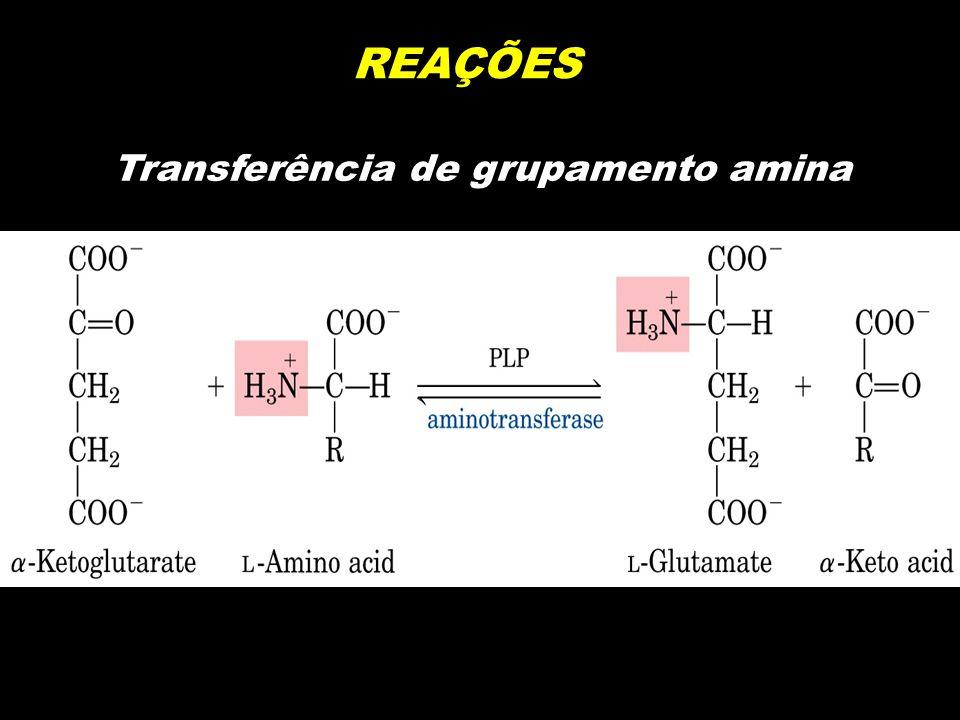 REAÇÕES Transferência de grupamento amina