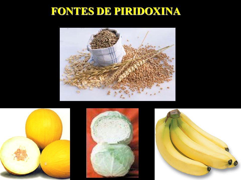 FONTES DE PIRIDOXINA