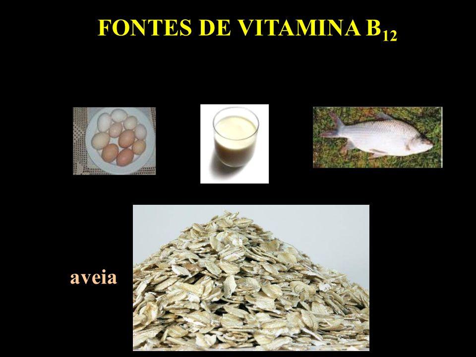 FONTES DE VITAMINA B 12 aveia