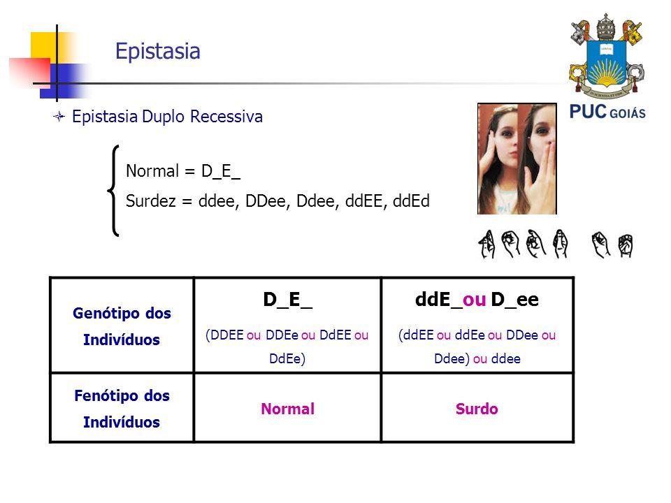 Epistasia Epistasia Duplo Recessiva Genótipo dos Indivíduos D_E_ (DDEE ou DDEe ou DdEE ou DdEe) ddE_ou D_ee (ddEE ou ddEe ou DDee ou Ddee) ou ddee Fen