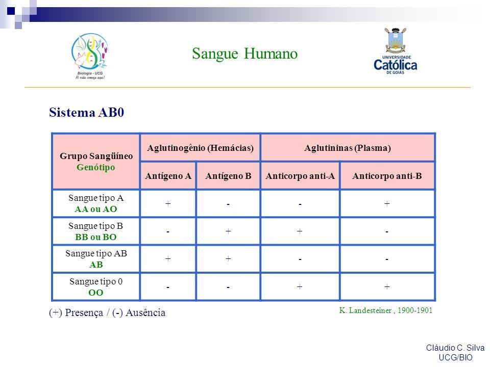 Sangue Humano Cláudio C. Silva UCG/BIO Sistema AB0 Grupo Sangüíneo Genótipo Aglutinogênio (Hemácias)Aglutininas (Plasma) Antígeno AAntígeno BAnticorpo