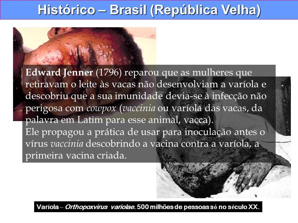 Histórico – Brasil (República Velha) Var í ola – Orthopoxvirus variolae. 500 milhões de pessoas s ó no s é culo XX. Edward Jenner (1796) reparou que a