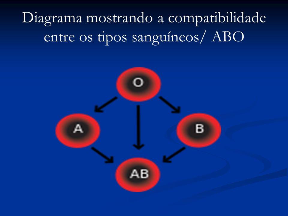 Diagrama mostrando a compatibilidade entre os tipos sanguíneos/ ABO