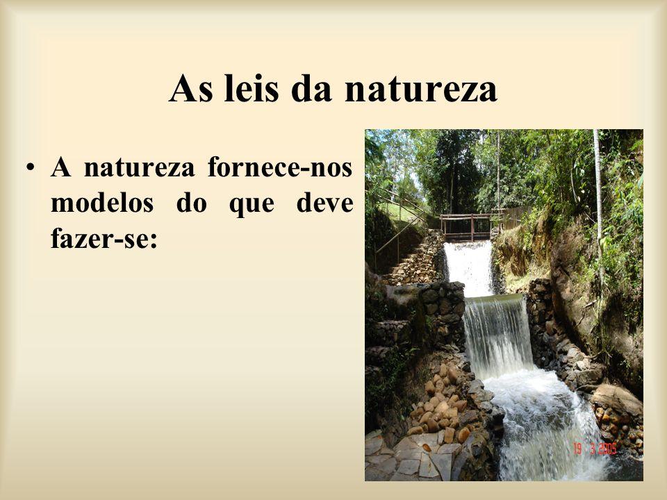 As leis da natureza A natureza fornece-nos modelos do que deve fazer-se: