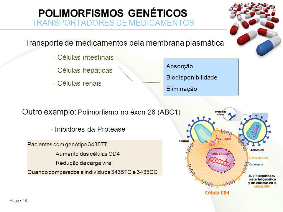 Page 18 POLIMORFISMOS GENÉTICOS TRANSPORTADORES DE MEDICAMENTOS Transporte de medicamentos pela membrana plasmática - Células intestinais - Células hepáticas - Células renais Absorção Biodisponibilidade Eliminação Outro exemplo: Polimorfismo no éxon 26 (ABC1) - Inibidores da Protease Pacientes com genótipo 3435TT: Aumento das células CD4 Redução da carga viral Quando comparados a indivíduos 3435TC e 3435CC