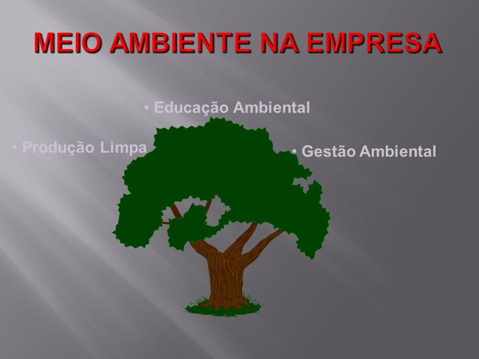 Gestão Ambiental Produção Limpa Educação Ambiental