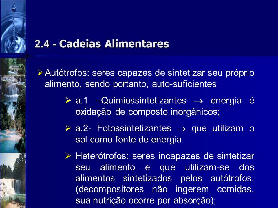 2.4 - Cadeias Alimentares Autótrofos: seres capazes de sintetizar seu próprio alimento, sendo portanto, auto-suficientes a.1 –Quimiossintetizantes ene
