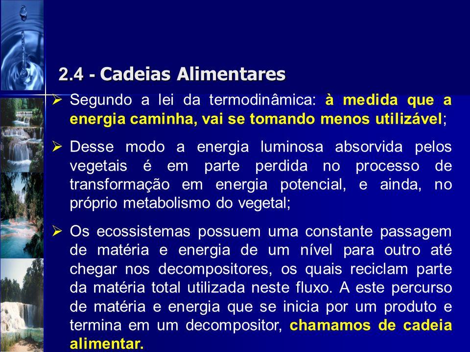 2.4 - Cadeias Alimentares Segundo a lei da termodinâmica: à medida que a energia caminha, vai se tomando menos utilizável; Desse modo a energia lumino