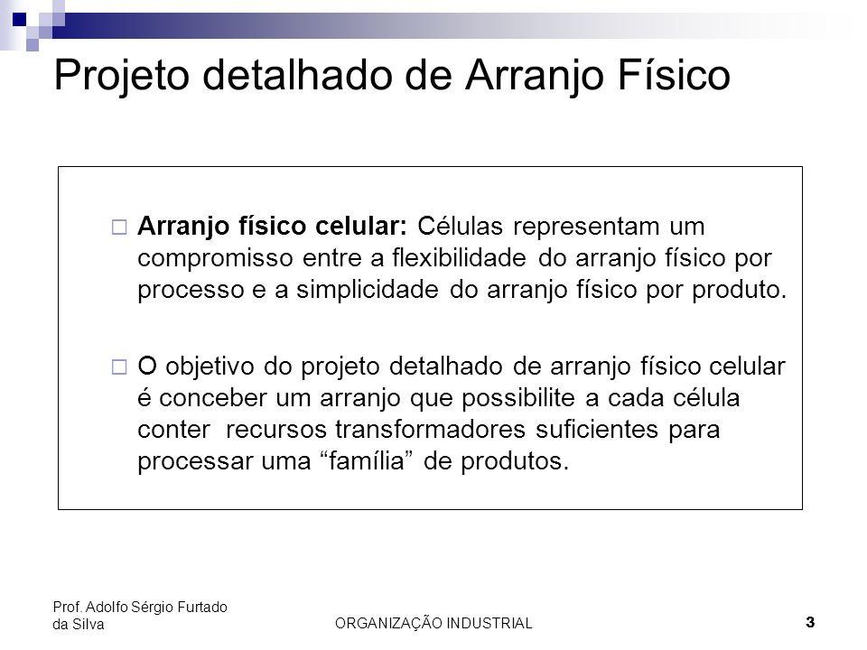 ORGANIZAÇÃO INDUSTRIAL4 Prof. Adolfo Sérgio Furtado da Silva