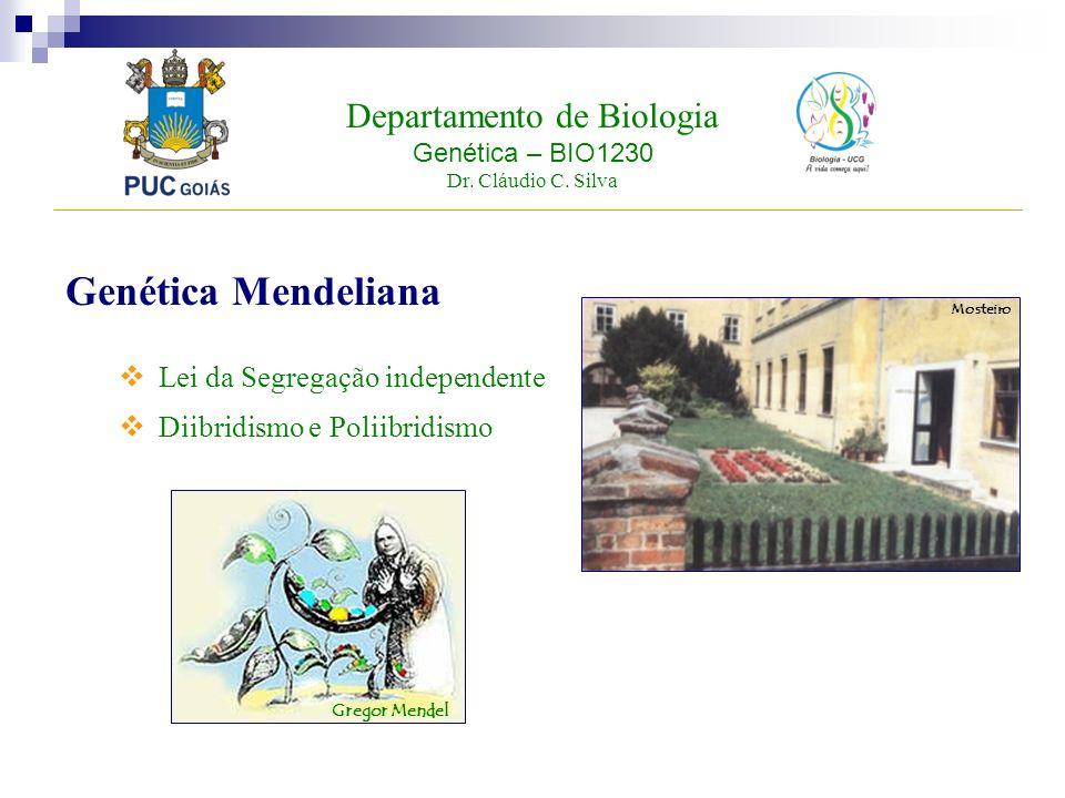Departamento de Biologia Genética – BIO1230 Dr. Cláudio C. Silva Genética Mendeliana Lei da Segregação independente Diibridismo e Poliibridismo Gregor