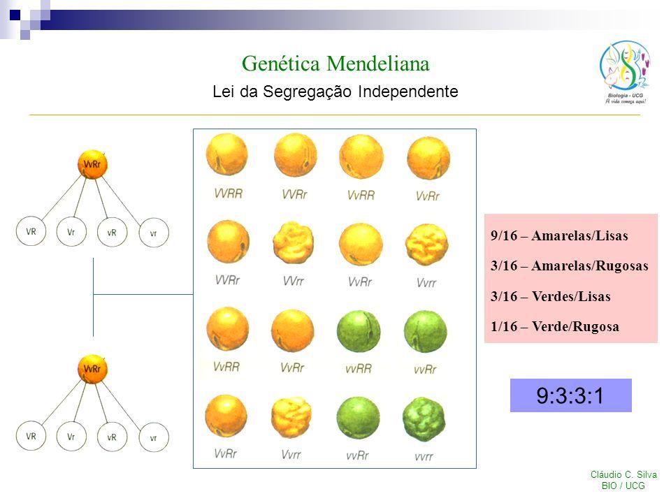 Genética Mendeliana Lei da Segregação Independente Cláudio C. Silva BIO / UCG 9/16 – Amarelas/Lisas 3/16 – Amarelas/Rugosas 3/16 – Verdes/Lisas 1/16 –