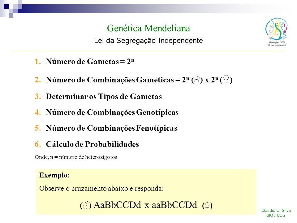 Genética Mendeliana Lei da Segregação Independente Cláudio C. Silva BIO / UCG 1.Número de Gametas = 2 n 2.Número de Combinações Gaméticas = 2 n () x 2