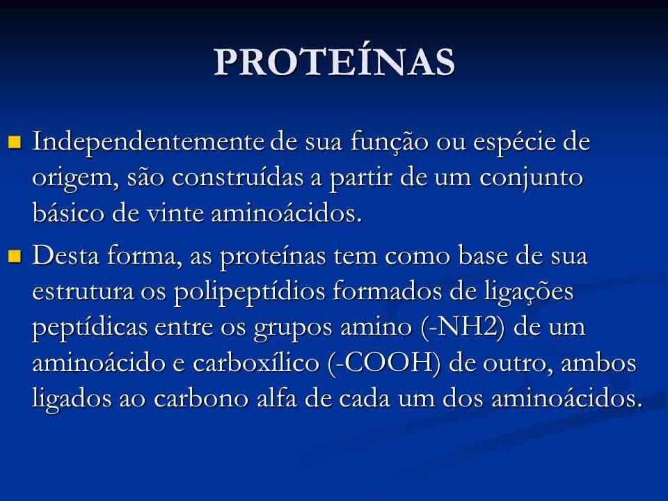 PROTEÍNAS Independentemente de sua função ou espécie de origem, são construídas a partir de um conjunto básico de vinte aminoácidos. Independentemente