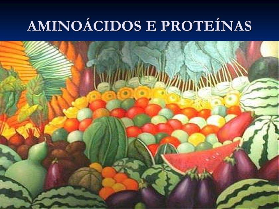 AMINOÁCIDOS Características Gerais São as unidades fundamentais das proteínas.