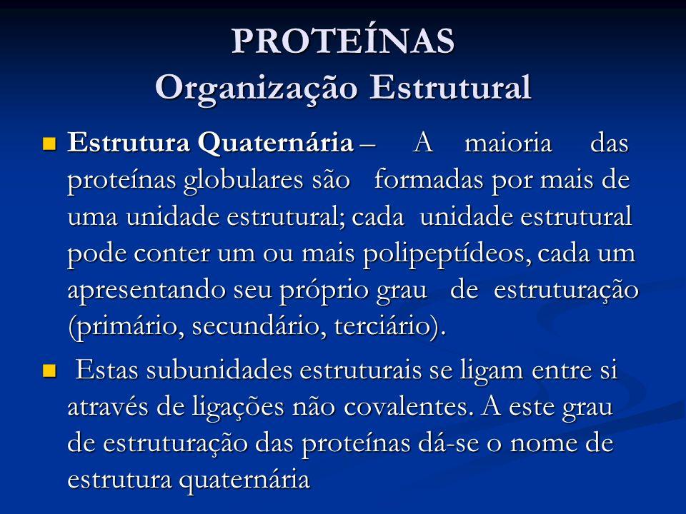 PROTEÍNAS Organização Estrutural Estrutura Quaternária – A maioria das proteínas globulares são formadas por mais de uma unidade estrutural; cada unid