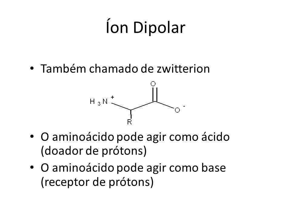 Íon Dipolar Também chamado de zwitterion O aminoácido pode agir como ácido (doador de prótons) O aminoácido pode agir como base (receptor de prótons)