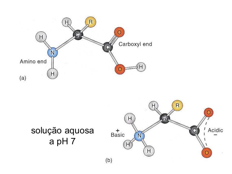 A cisteína pode ser facilmente oxidada para formar um aminoácido dimérico unido covalentemente, chamado cistina, no qual duas moléculas de cisteína estão unidas por uma ponte dissulfeto.