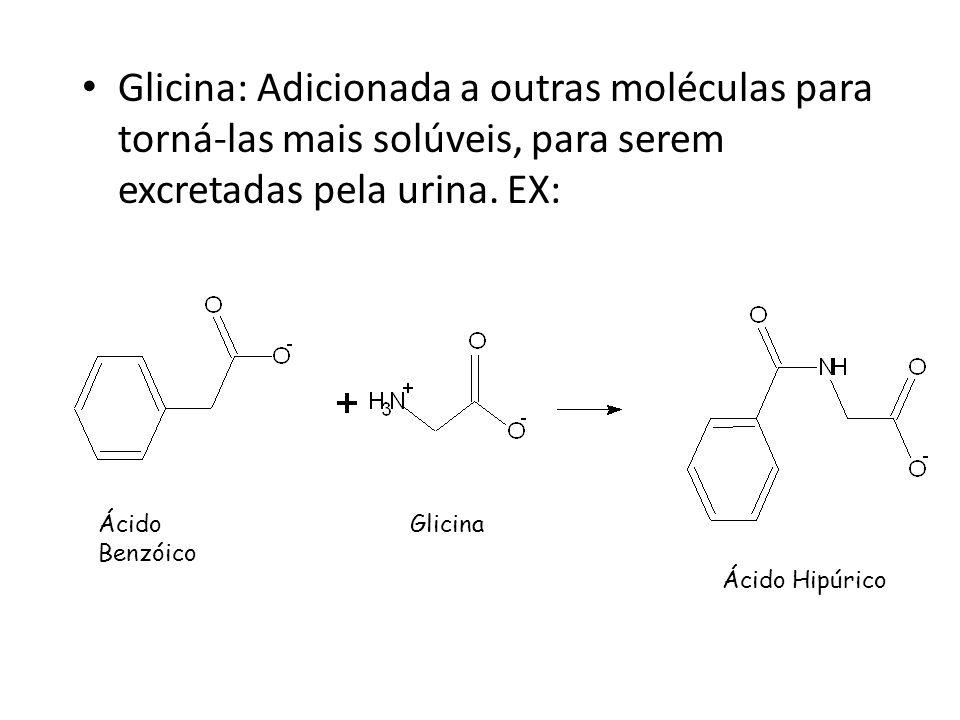 Glicina: Adicionada a outras moléculas para torná-las mais solúveis, para serem excretadas pela urina. EX: Ácido Benzóico Glicina Ácido Hipúrico