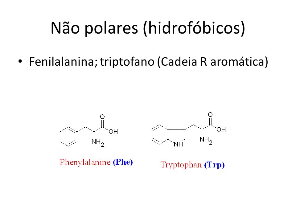 Não polares (hidrofóbicos) Fenilalanina; triptofano (Cadeia R aromática)