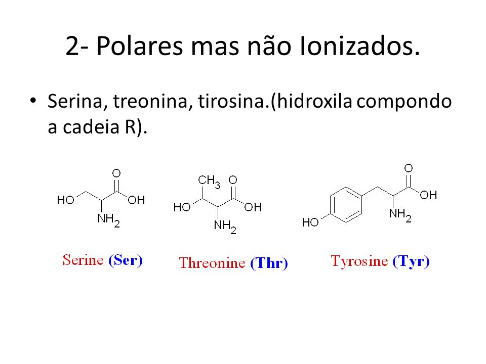 Polares mas não Ionizados. Asparagina, glutamina, cisteína, glicina, metionina.