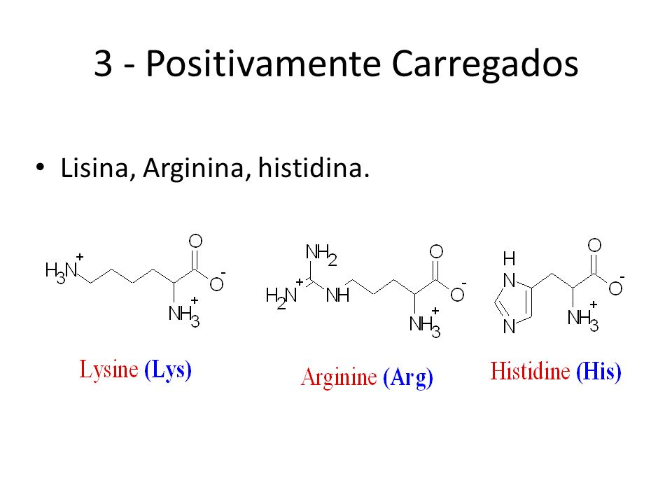 3 - Positivamente Carregados Lisina, Arginina, histidina.
