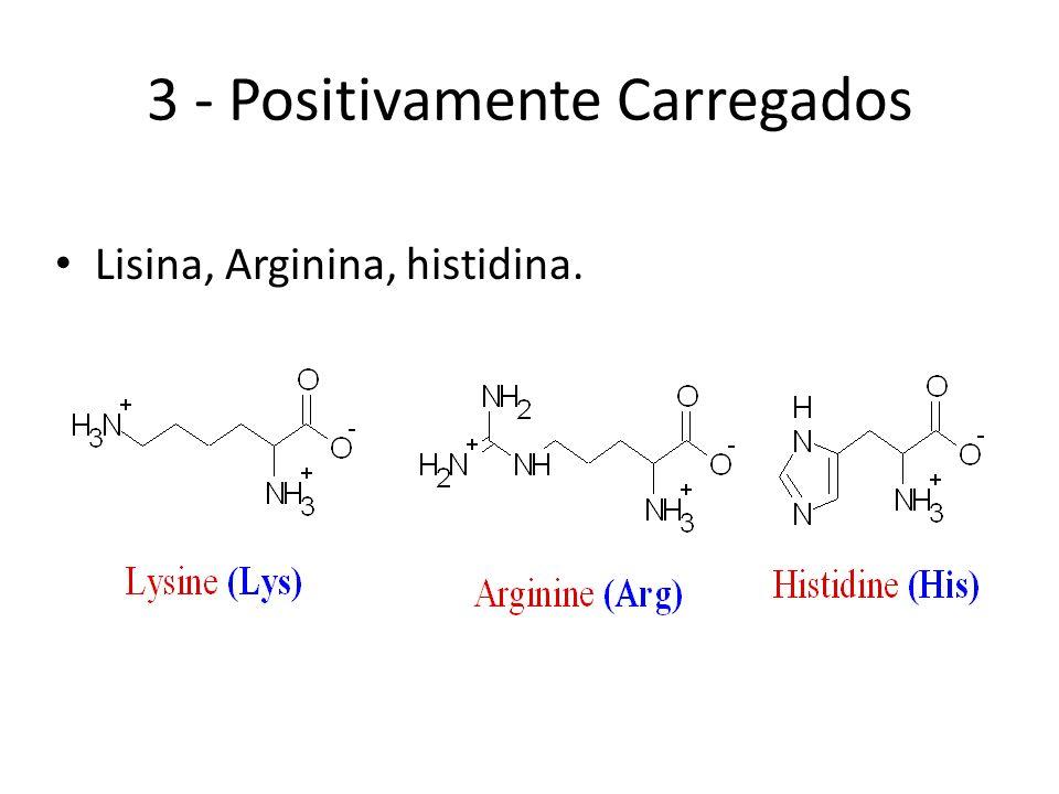 O triptofano é precursor de um neurotransmissor muito importante: SEROTONINA. Triptofano Serotonina