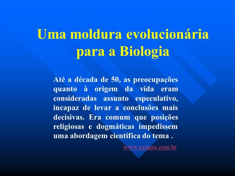 Uma moldura evolucionária para a Biologia Até a década de 50, as preocupações quanto à origem da vida eram consideradas assunto especulativo, incapaz