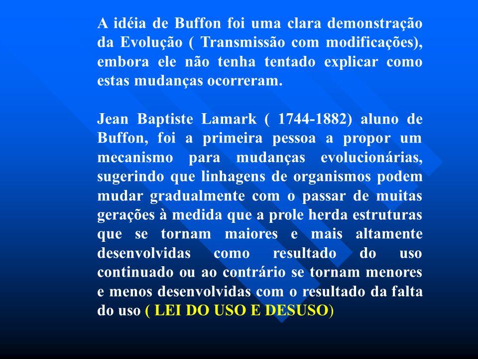 A idéia de Buffon foi uma clara demonstração da Evolução ( Transmissão com modificações), embora ele não tenha tentado explicar como estas mudanças oc