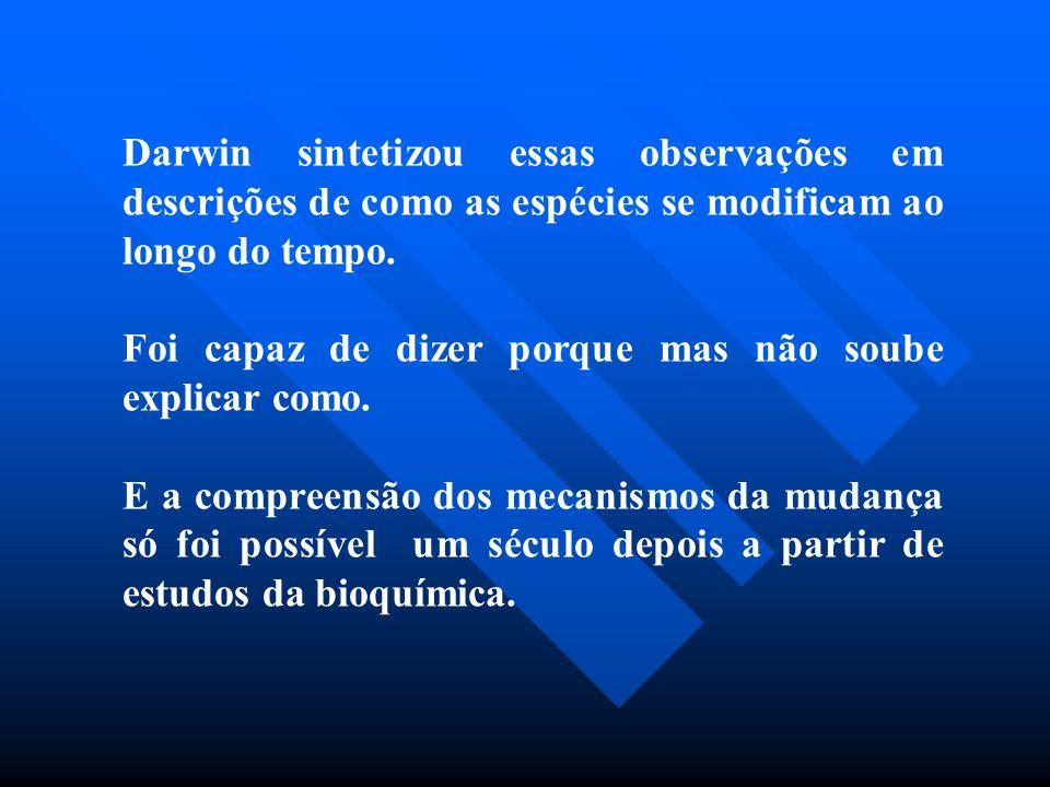 Darwin sintetizou essas observações em descrições de como as espécies se modificam ao longo do tempo. Foi capaz de dizer porque mas não soube explicar
