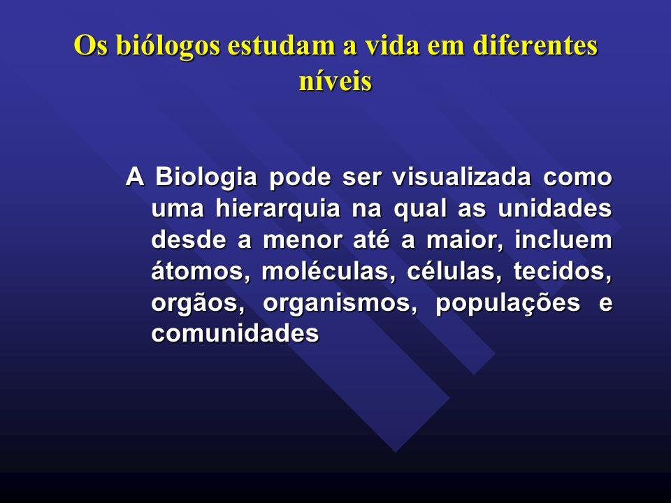 Os biólogos estudam a vida em diferentes níveis A Biologia pode ser visualizada como uma hierarquia na qual as unidades desde a menor até a maior, inc