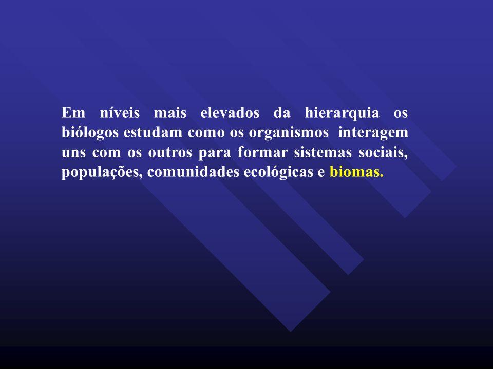 Em níveis mais elevados da hierarquia os biólogos estudam como os organismos interagem uns com os outros para formar sistemas sociais, populações, com