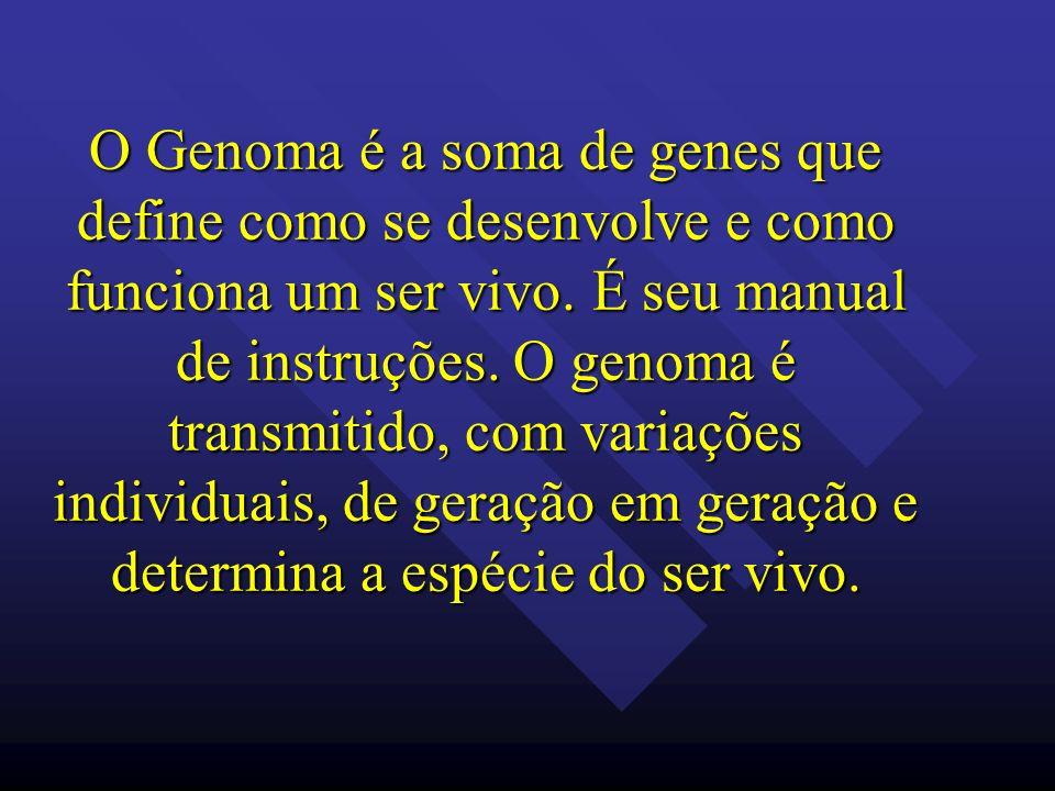 O Genoma é a soma de genes que define como se desenvolve e como funciona um ser vivo. É seu manual de instruções. O genoma é transmitido, com variaçõe