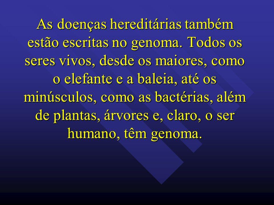 As doenças hereditárias também estão escritas no genoma. Todos os seres vivos, desde os maiores, como o elefante e a baleia, até os minúsculos, como a